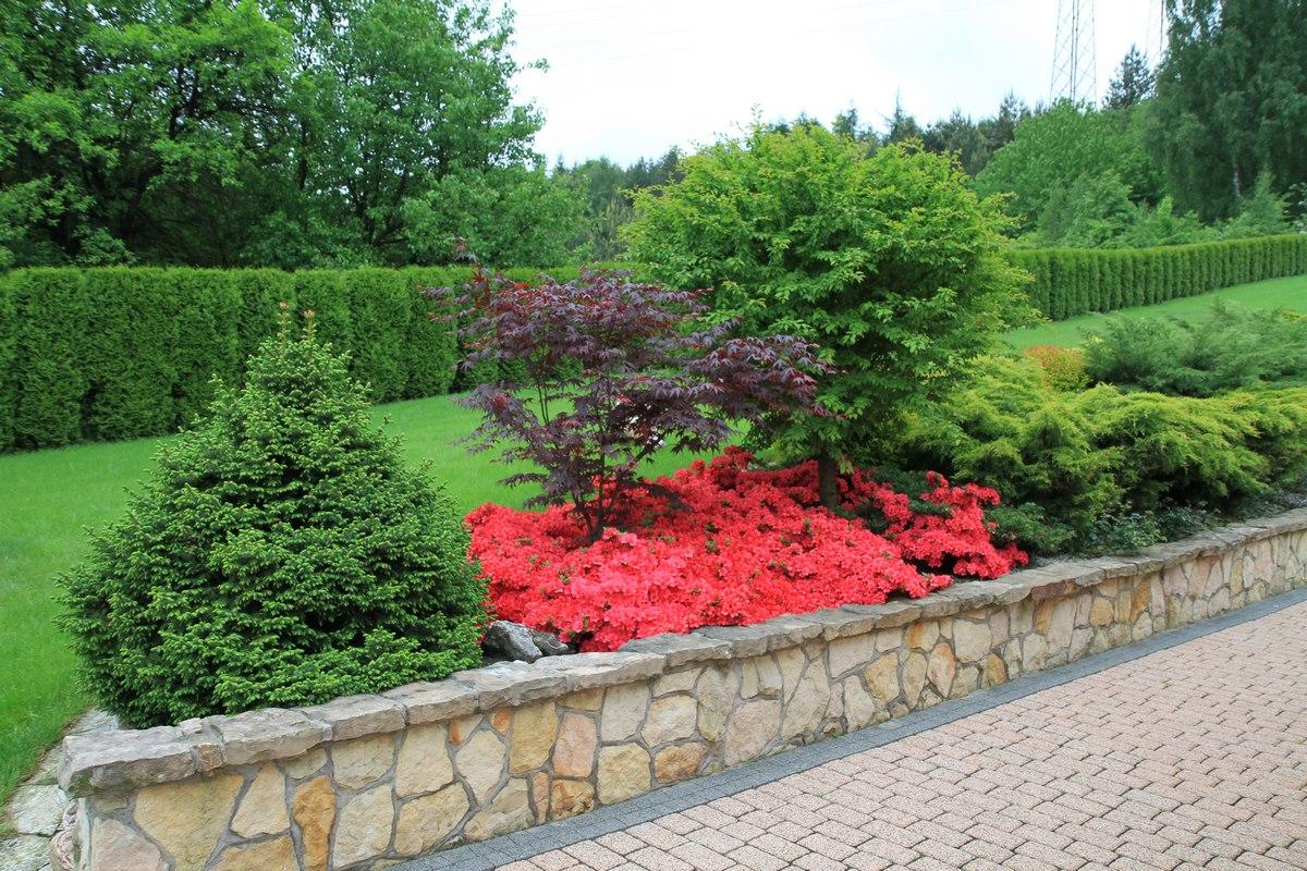 przycinanie roślin w ogrodzie
